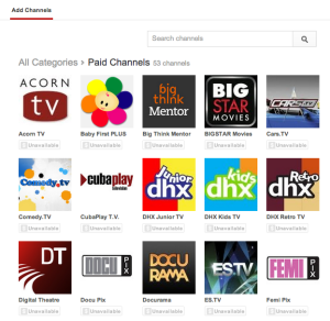 YouTube Partner Programme introduces Paid Channels